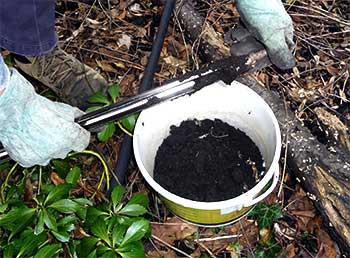 пробы почв